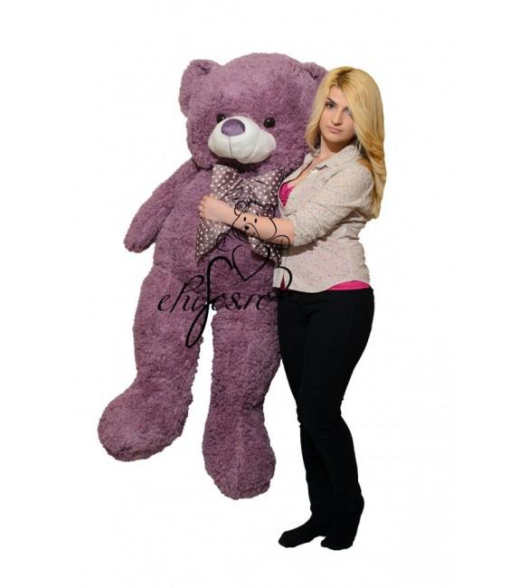 Urs mare cret