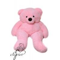 Urs mare roz