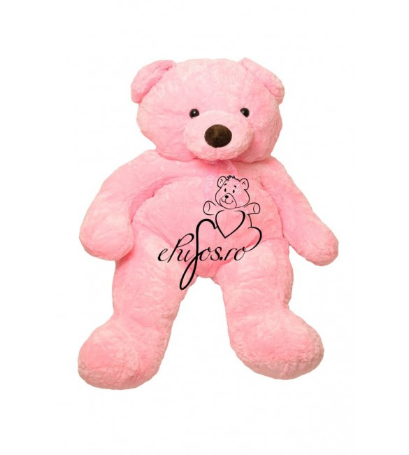 Urs roz